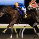 【勝島王冠】11月29日の有力地方馬【地方競馬】