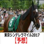 【東京シンデレラマイル2017】予想と有力馬診断【最終予想】