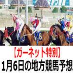 【ガーネット特別】1月6日の地方競馬予想【オトヒメ賞】