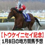 【トウケイニセイ記念】1月8日の地方競馬予想【睦月特別】