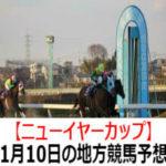 【ニューイヤーカップ】1月10日の地方競馬予想【初茜特別】