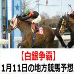 【白銀争覇】1月11日の地方競馬予想【新春賞】