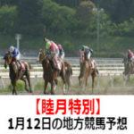 【睦月特別】1月12日の地方競馬予想【宝船賞】