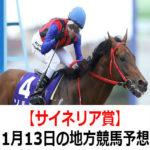 【サイネリア賞】1月13日の地方競馬予想【寒九賞】