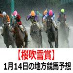 【花吹雪賞】1月14日の地方競馬予想【南天賞】