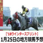 【'18ウインタースプリント】1月25日の地方競馬予想【初夢賞】