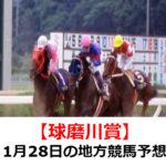 【球磨川賞】1月28日の地方競馬予想【皿鉢料理特別】