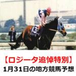 【ロジータ追悼特別】1月31日の地方競馬予想【猛虎特別】