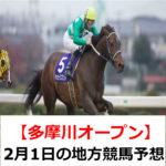 【多摩川オープン】2月1日の地方競馬予想【群雄特別】