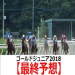 【ゴールドジュニア2018】予想と人気馬診断【最終予想】