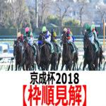 【京成杯2018】予想と枠順見解