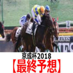 【京成杯2018】予想と土曜馬場の傾向【最終予想】