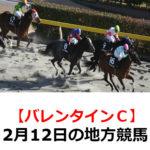 【バレンタインカップ】2月12日の地方競馬予想【アメジスト特選】