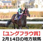 【ユングフラウ賞】2月14日の地方競馬予想【バレンタイン特別】