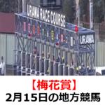 【梅花賞】2月15日の地方競馬予想【春告鳥特別】