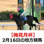 【梅見月杯】2月16日の地方競馬予想【早春特別】