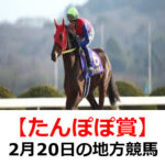【たんぽぽ賞】2月20日の地方競馬予想【バレンタイン賞】