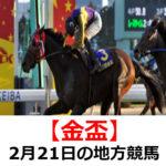 【金盃】2月21日の地方競馬予想【梅花賞】