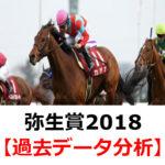 【弥生賞2018】過去10年間のデータ・傾向