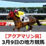 【アクアマリン賞】3月9日の地方競馬予想【朧月賞】