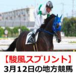 【駿風スプリント】3月12日の地方競馬予想【桜月賞】