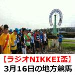 【ラジオNIKKEI盃】3月16日の地方競馬予想【ザ・ナゲッツ ハートビートナイター賞】