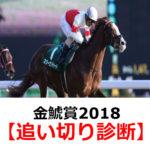 【金鯱賞2018】追い切り診断